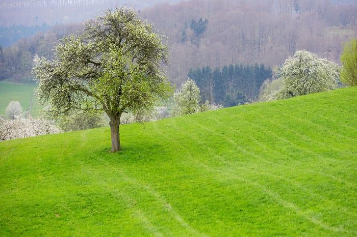 Landschaft Schwaben