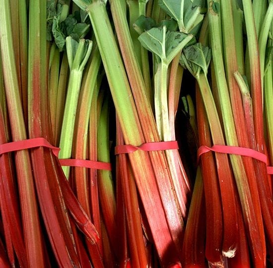 SpicedRhubarb