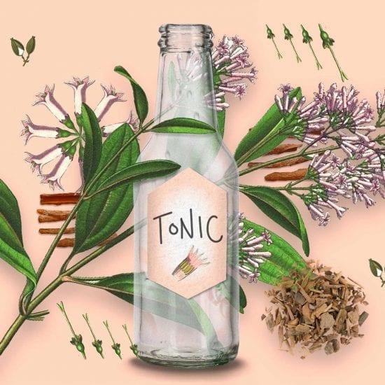 Tonic Water Chinarinde | Mixology — Magazin für Barkultur