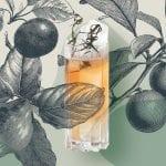 Fünf Cocktails mit Obstbrand