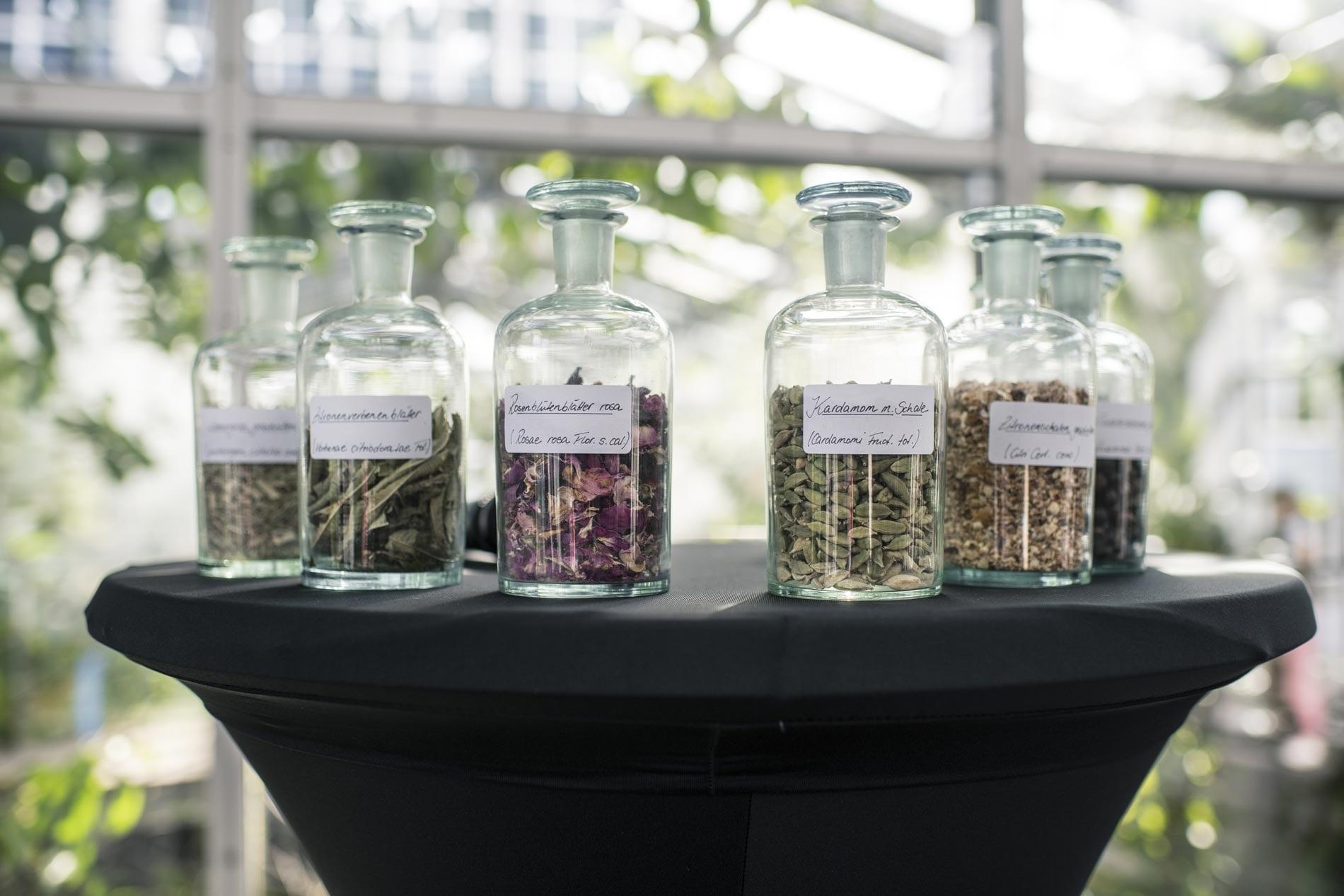 Humboldt Gin Botanischer Garten
